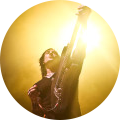 Richard Fortus image