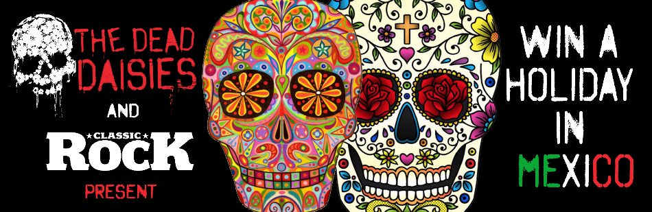 TDD-MEXICOholidaybanner2