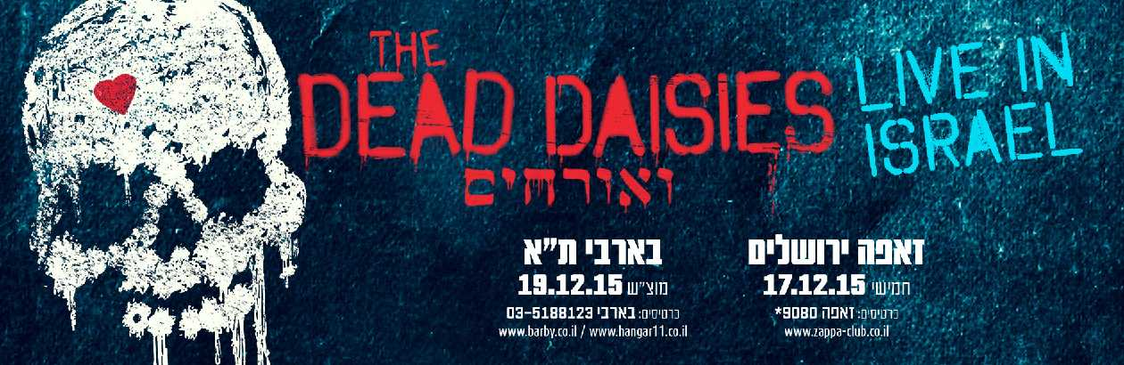 TDD-israel-tour-banner-small1