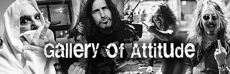 TDD-attitudegallery-smallweb-banner