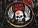 The_Dead_Daisies (28)