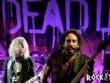 DeadDaisiesRT6